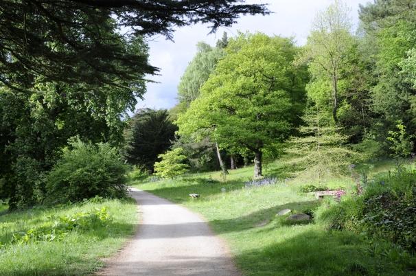 PIC 2 - Arboretum Walk